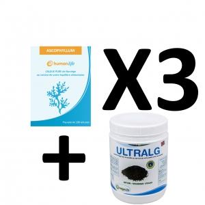 Agrofertil Algue Humanlife Ascophyllum Pack X3 + Ultrag 500g